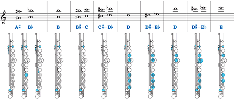 Pretty Flute Fingering Chart Images Gallery - Flute ...